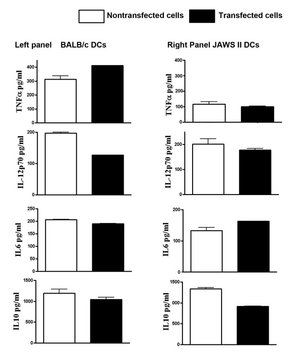 Cytokine (TNF-α, IL-12p70, IL-6 and IL10) levels (pg/ml) in cell-free supernatants of JAWS II and BALB/c mice derived primary DCs after 24 h of genetic transfection with pVR1012-Ag2/PRA plasmid DNA . Results are from two experiments performed in triplicate.