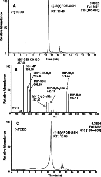 LC-MS/MS analysis of B[ a ]PDE-GSH-adducts in (±)-B[ a ]PDE-treated H358 cells. (A) LC-MS/MS chromatogram of the intracellular (−)-B[ a ]PDE-GSH-adduct in TCDD-induced H358 cells after a 4 h incubation. (B) Product ion spectrum of the (−)-B[ a ]PDE-GSH-adduct (MH + , m / z 610) in TCDD-induced H358 cells. (C) LC-MS/MS chromatogram of the intracellular (−)-B[ a ]PDE-GSH-adduct in noninduced H358 cells after a 4 h incubation. H358 cells pretreated with 10 nM TCDD for 24 h had increased levels of (−)-B[ a ]PDE-GSH-adducts.