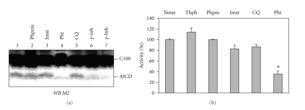 Effect of metalloprotease inhibitors, and metal chelators on γ -secretase. Chelators and inhibitors were added as DMSO solutions (final DMSO concentration 2.5%) to the guinea pig brain γ -secretase/C100-3XFLAG reactions. (a) Representative western blot of γ -secretase assay in the presence of various inhibitors. Phpm, phosphoramidon; Ilmst, ilomastat; Pht, phenanthroline; CQ, clioquinol; γ -inh, L-685,458, used at 10 nM (lane 6) and 100 nM (lane 7). (b) Effect of metalloprotease inhibitors on the γ -secretase assay. Activity is expressed as the % of substrate converted into AICD, as determined from band density analysis with GeneTools software. The error bars represent SEM. Inhibitor concentrations were selected as follows: thiorphan, 250 nM; phosphoramidon, 25 μ M; ilomastat, 250 nM; phenanthroline, 5 mM; clioquinol, 100 μ M.
