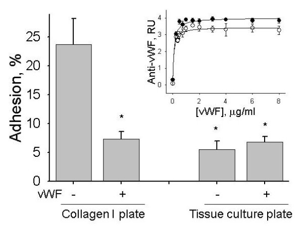 Effect of vWF on adhesion of hMSCs to collagen I coated or tissue culture treated plastic plates . Adhesion of hMSCs to collagen I coated and tissue culture plates was measured before and after immobilization of vWF. Before the adhesion assay vWF was removed and plates were washed with HBSS. Asterisks mark statistically significant differences compared to collagen I coated plate (t-test, P -value