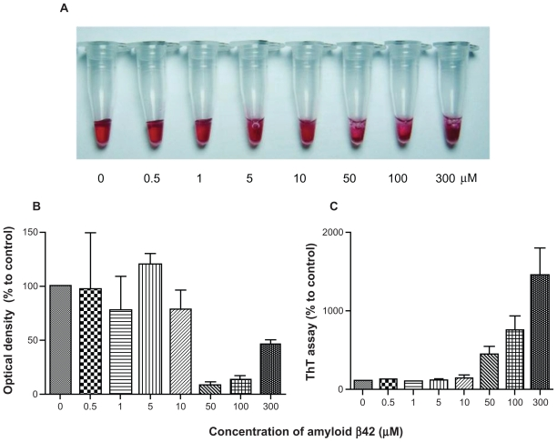 AuNP–Aβ42 precipitates in an Aβ42 concentration-dependent manner. Various concentrations of biotin–Aβ42 (0, 0.5, 1, 5, 10, 50, 100, and 300 μmol/L) were added to streptavidin-AuNP to determine the optimal concentration of Aβ42 conjugation. Visible precipitates developed at 50 μmol/L biotin–Aβ42 A ), accompanied by a decrease in optical density B ), and increase in ThT binding C ), indicating that 10–50 μmol/L is the optimal concentration of Aβ42 to saturate AuNP surfaces and induce AuNP–Aβ42 aggregation. Above 50 μmol/L, free Aβ42 reverses the optical density despite the increased ThT value. Abbreviations: Aβ42, amyloid β42; AuNP, gold nanoparticle; ThT, thioflavin T.