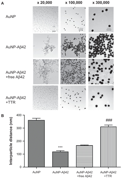 TEM analysis of AuNP–Aβ42 precipitates. A ) AuNP–Aβ42 formed clusters with short interparticle distances, and AuNP underwent an even distribution of particles. The addition of free Aβ42 resulted in a similar pattern of aggregation as AuNP–Aβ42 but a greater interparticle distance and dark background staining. TTR blocked the formation of AuNP–Aβ42 aggregates and maintained the homogeneous dispersion of particles as evenly as the AuNP control. B ) Interparticle distances were measured and compared (*** P