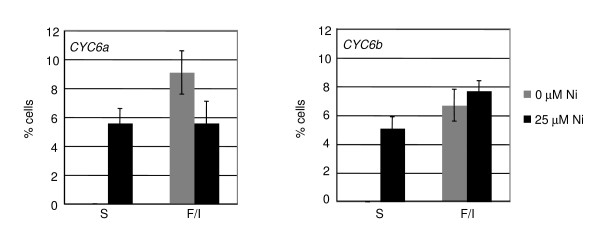 Chemically inducible complementation of the pf14 mutant by the CYC6:RSP3-HA construct . Percentage of swimming (S) and flagellated-immotile (F/I) cells of two transformants, 48 hours after Ni addition. The transformants were grown in TAP ENEA2 medium in 24-well microtiter plates and induced at mid-log phase with 25 μM Ni. For details, see Methods.