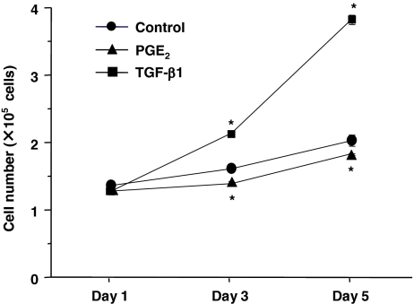 Effects of TGF-β1 and PGE2 on proliferation of fibroblasts derived from human ESCs. Fibroblasts were cultured in monolayers in 10% FCS-DMEM with or without PGE 2 (10 −7 mol/l) or TGF-β1 (10 −10 mol/l). Cells were detached with trypsin/EDTA and cell numbers were determined using a Coulter electronic cell counter. Vertical axis cell number (×10 5 cells/ml); horizontal axis , time (d). Each point shows mean ± SEM of three separate experiments, each of which included triplicated wells. Circles control, triangles PGE 2 , squares TGF-β1; * p