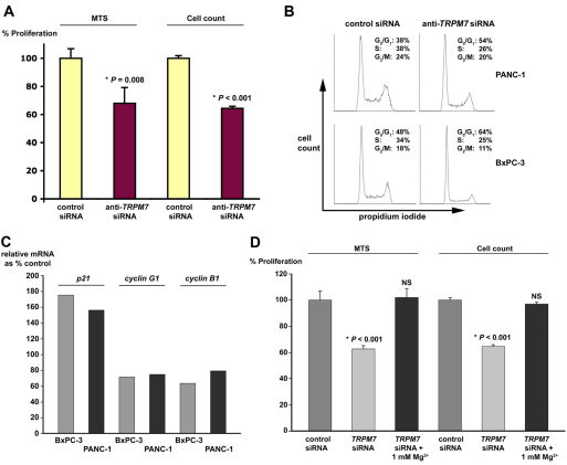 TRPM7 controls cellular proliferation by regulating cell-cycle progression and by modulating p21 CDKN1A , cyclin G1 and cyclin B1 expression and Mg 2+ level. (A) PANC-1 cells were treated with siRNA directed against TRPM7 , non-targeting control siRNA, or without siRNA, and then analyzed by MTS assay and counting cells. Proliferation in the anti- TRPM7- siRNA-treated cells is represented as percent of that in the cells treated with non-targeting control siRNA. Each column represents the mean from triplicate samples. Bars represent s.d. * P