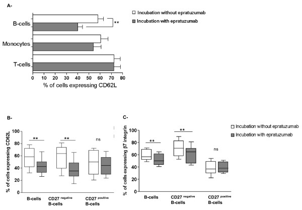 Epratuzumab leads to decreased surface expression of the adhesion molecules CD62L and β7 integrin on CD27 negative B-cells . Comparison of the surface expression of CD62L on PBMCs from SLE patients with (grey histogram) and without (white histogram) epratuzumab incubation (a) . Monocytes (CD14 positive ) showed a moderate but non-significant reduction of CD62L, whereas this expression was not influenced on T-cells <t>(CD3</t> positive ) by epratuzumab. Notably, epratuzumab led to a significant reduction of the CD62L surface expression on B-cells ( P