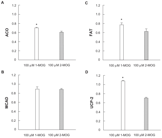 Effects of 100 μM 1-monooleyl glycerol (1-MOG) and 2-monooley glycerol (2-MOG) on expression of mRNA of acyl-CoA oxidase (ACO)  A ) medium-chain acyl-CoA dehydrogenase (MCAD)  B ) fatty acid translocase (FAT)  C ) and uncoupling protein-2 (UCP-2)  D ) in the Caco-2 cells. Notes:  Boxes and bars indicate mean ± SD of relative quantitation mRNA values using 18S as an internal control. N = 8. * P
