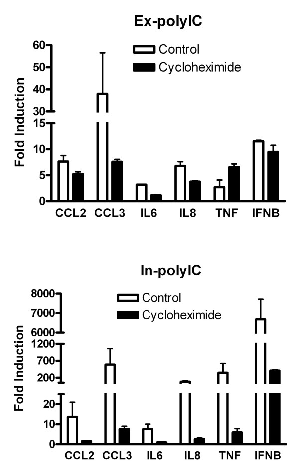 Blocking protein synthesis diminishes substantial gene inductions by in-polyIC stimulation . HT1080 cell line was treated with 40 μg/ml ex-polyIC and 0.4 μg/ml in-polyIC for 8 hours in the presence/absence of 10 μg/ml cycloheximide. Gene expression was measured using qPCR and the mean from triplicate experiments was calculated. Error bars represent standard error. Gene inductions in response to ex-polyIC are not significantly affected by cycloheximide treatment whereas gene inductions in response to in-polyIC are diminished by cycloheximide treatment.