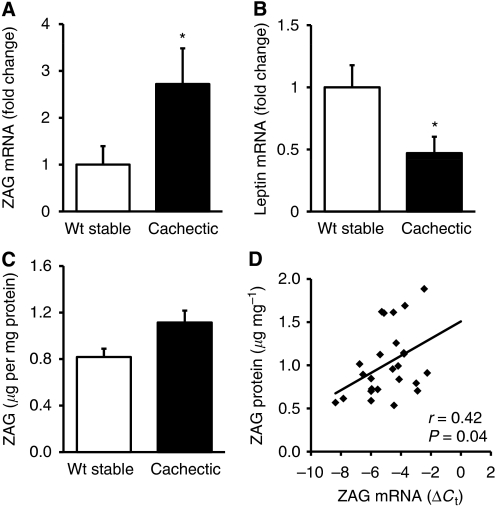Zinc-α2-glycoprotein gene and protein expression in adipose tissue of cancer patients. mRNA levels of <t>ZAG</t> ( A ) and leptin ( B ) in subcutaneous adipose tissue of weight-stable ( n =8) and cachectic ( n =17) cancer patients by real-time PCR, expressed as means±s.e.m. Zinc- α 2-glycoprotein protein levels in subcutaneous fat of weight-stable ( n =8) and cachectic ( n =17) cancer patients by <t>ELISA,</t> expressed as means±s.e.m. ( C ) Correlation between ZAG protein and mRNA levels ( D ) in adipose tissue; n =25. * P