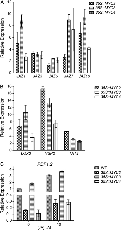 MYC3 and MYC4 regulate expression of JA-responsive genes. (A, B) qRT-PCR expression analysis of JAZ genes and wound-responsive genes in 10-d-old wild-type and MYC overexpression seedlings without JA treatment. Wild-type samples served as a calibrator for the calculation of relative expression levels (arbitrarily set to one). (C) Relative transcript levels of the PDF1.2 gene in 10-d-old wild-type and overexpression transgenic seedlings with or without 10 μM JA treatment (incubated for 6 h). Wild-type samples without JA treatment served as a calibrator, and relative expression was determined from replicate measurements in two independent biological replicates. Data are mean ±SE.