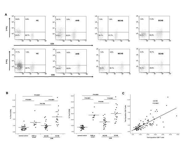 Elevated Tim-3 expression on circulating CD4 and CD8 T cells in HBV-infected individuals . (A) <t>PBMCs</t> from normal controls, AHB patients (early phase), MCHB and SCHB patients were stained with antibodies against CD3, CD4/CD8, and Tim-3. An isotype-matched antibody was used as a negative control. (B) The percentage of Tim-3 cells within CD4+ and CD8+ T cell populations are increased in AHB and CHB patients and further enhanced in the severe stage of CHB. Each dot represents an individual data point and the horizontal lines represent the mean. The Mann-Whitney U test was used to compare differences among groups. (C) There is a significantly positive correlation between the frequency of Tim-3-expressing CD4 + and CD8 + T cells in the studied subjects. Spearman test was performed for correlation analysis.