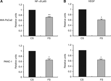 Effects of FXR siRNA on NF- κ B p65 and VEGF activities. CS, control siRNA; FS, FXR siRNA. ( A ) Nuclear extracts were prepared from control siRNA or FXR siRNA-transfected MIA PaCa2 and PANC-1 cells and subjected to analysis for NF- κ B p65 activity as measured by Active Motif enzyme-linked immunosorbent assay (ELISA). ( B ) The culture medium of control siRNA or FXR siRNA-transfected MIA-PaCa2 and PANC-1 cells was used for the detection of VEGF using ELISA, as described under Materials and Methods. The relative-fold change of NF- κ B p65 or VEGF activity in FXR siRNA-transfected cells was normalised against control FXR siRNA-transfected cells. Values in control siRNA-transfected cells were arbitrarily set to 1. Columns, mean of three independent experiments; bars, s.e.m. * P