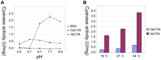 Influence of pH and temperature on cyanase activity. The His:AtCYN and His:OsCYN enzymes were purified and their activities assayed in vitro . (A) Effect of pH on cyanase activity at 27°C. BSA was used as a control. (B) Effect of temperature on cyanase activity at pH 7.7.