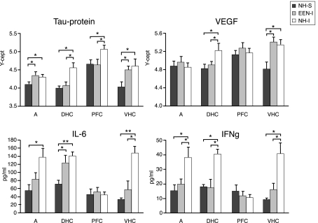 Protein markers in the AD, PFC, DHC, and the VHC of animals in the various experimental groups . Tissue extracts were prepared from dissected brain regions of NH-S, NH-I, and EEN-I rats. Tissue levels of selected protein markers were assayed using either RPPM or ELISA. The Y -axis intercept ( Y -cept) and pg/ml (IL-6 and IFNγ) indicate measured protein levels. * p