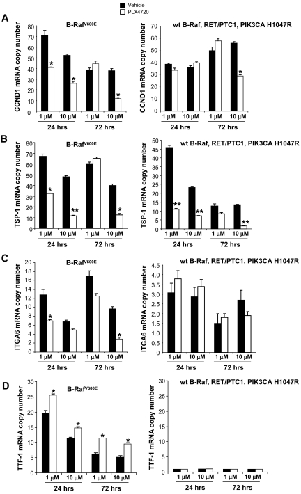 Gene expression with PLX4720 treatment. Quantitative real-time RT-PCR shows mRNA copy number of CCND1 (A) , TSP-1 (B) , ITGA6 (C) , and TTF-1 (D) mRNA in 8505c and TPC-1 cells after 24 hours or 72 hours of treatment with PLX4720 (either 1 μM or 10 μM). Abbreviations: CCND1, cyclin D1; ITGA6, integrin α6; RT-PCR, reverse transcriptase polymerase chain reaction; TSP-1, thrombospondin-1; TTF-1, thyroid transcription factor; wt, wild-type.