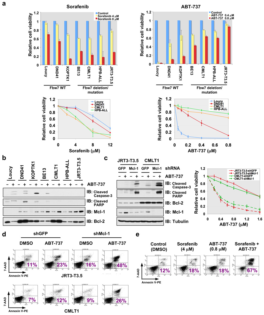 Elevated Mcl-1 expression protects Fbw7-deficient T-ALL cell lines from ABT-737-induced apoptosis a , Cell viability assays showing that Fbw7-deficient T-ALL cell lines were more sensitive to sorafenib, but resistant to ABT-737 treatment. T-ALL cells were cultured in 10% FBS-containing medium with the indicated concentrations of sorafenib or ABT-737 for 48 hours before performing the cell viability assays. Data was shown as mean ± SD for three independent experiments. b , Immunoblot analysis of the indicated human T-ALL cell lines with or without ABT-737 (0.8 µM) treatment. c , Specific depletion of endogenous Mcl-1 expression restored ABT-737 sensitivity in the indicated Fbw7-deficient T-ALL cell lines. Various T-ALL cells were cultured in 10% FBS-containing medium with the indicated concentrations of ABT-737 for 48 hours before performing the cell viability assays, or with or without ABT-737 (0.8 µM) treatment for 24 hours before collecting whole cell lysates for immunoblot analysis with the indicated antibodies. For cell viability assays, data was shown as mean ± SD for three independent experiments. d , <t>7-Amino-Actinomycin</t> D (7-AAD)/Annexin V double-staining FACS analysis to detect the percentage of ABT-737-induced apoptosis in the indicated Fbw7-deficient T-ALL cell lines where the endogenous Mcl-1 was depleted by lentiviral shRNA treatment (lentiviral shGFP was used as a negative control). Various T-ALL cells were cultured in 10% FBS-containing medium with or without ABT-737 (0.8 µM) treatment for 48 hours before the FACS analysis. Numbers indicate the percentage of apoptotic cells. e , 7-AAD/Annexin V double-staining FACS analysis to demonstrate that sorafenib treatment restores ABT-737 sensitivity to Fbw7-deficient HPB-ALL cells. HPB-ALL cells were cultured in 10% FBS-containing medium with the indicated concentrations of sorafenib and/or ABT-737 for 48 hours before the FACS analysis. Numbers indicate the percentage of apoptotic cells.