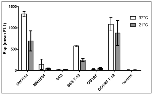 Differential expression of cell wall-associated Esp at 37°C and 21°C measured by flow cytometry (FACS) of anti-Esp labelled cells. Strains UW3114 (donor) and MMH594 (reference) are shown for comparison. 64/3 and OG1RF are the recipient strains. Strains 64/3 T-10 (64/3xUW3114 T-10) and OG1RF T-12 (OG1RFxUW3114 T-12) are the <t>transconjugants</t> that acquired the E. faecalis PAI from strain UW3114 (See also Table 2 ). Notice the enhancement of esp expression in the transconjugant strains compared to the corresponding recipient (p