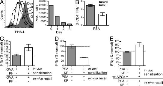 Native complex N-glycans are required for PSA-driven immune responses in vivo. (A) WT C57BL/6 animals ( n = 8) were treated daily for 1, 2, or 3 d with 250 µg of KF, and then sacrificed to harvest splenocytes. Cells were stained for native complex N-glycans using PHA-L. Representative histogram shown. (B) WT mice ( n = 3 per group) were treated with KF or PBS for 3 d, as in A. Animals were then sensitized with 100 µg PSA. Splenocytes were harvested 6 d later, stained for IFN-γ and CD4, and analyzed by flow cytometry. (C) KF- or PBS-pretreated mice ( n = 6) were sensitized with 100 µg OVA and sterile cecal content adjuvant. 4 d later, CD4 + T cells were isolated and restimulated ex vivo with normally glycosylated APCs and OVA ( n = 6). (D) Animals ( n = 6) were treated as in C, only with 100 µg of PSA rather than OVA. The PSA-specific recall ( n = 18) was measured after ex vivo restimulation with normally glycosylated APCs and PSA. (E) Animals ( n = 6) were treated as in D, only with the additional adoptive transfer of 5 × 10 6 fresh normally glycosylated APCs at the time of PSA injection ( n = 12). For panels C–E, data were normalized to the antigen-sensitized animals without KF. All bar graphs show the mean ± SEM.