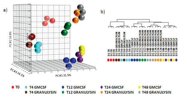 Gene expression analysis of monocytes cultured with GM-CSF or 15 kDa Granulysin . a) Principal component analysis of all samples based on the entire dataset (33757 genes); b) Dendrogram of the unsupervised cluster of 9951 genes that were present in at least 22 samples and whose expression differed in at least 5 samples by more than 1.75-fold from the median