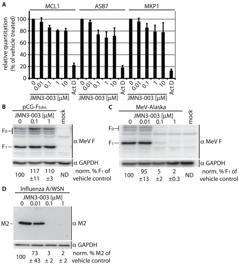 Host cell mRNA synthesis and translation are unaffected by compound JMN3-003. A ) Relative TaqMan RT-PCR-based quantitation of three unstable cellular <t>mRNAs</t> (MCL1, <t>ASB7,</t> MKP-1) after exposure of cells to JMN3-003 for six hours. Controls were treated with Actinomycine D (Act D) for comparison. C T values are expressed relative to vehicle-treated samples and reflect averages of three independent experiments, each analyzed in triplicate, ± SD. B–D ) Expression of virus-encoded but not host cell or plasmid-encoded viral proteins is blocked by JMN3-003. Immunodetection of transiently expressed MeV-F ( B ), virus-encoded MeV-F ( C ), and virus-encoded influenza A/WSN M2 ( D ) in cell lysates after incubation of cells in the presence of compound or vehicle only (DMSO) for 30 hours. As internal cellular standard, membranes were probed for GAPDH in parallel. Numbers correspond to average densitometric quantitations ± SD of three experiments, representative immunoblots are shown. (ND: not determined).