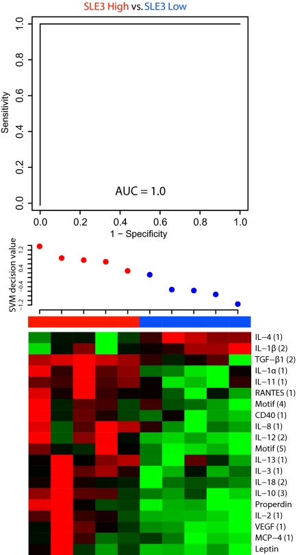 Expression profiling of subsets of SLE3 reflecting disease activity, using a 135 recombinant antibody microarray. Classification of SLE3 subsets, grouped based on disease activity (SLEDAI values); SLE3 low (blue) (mean 13, range 10–16), SLE high (red) (mean 24, range 17–32), based on all 135 antibodies, using a SVM-based leave-one-out cross validation test, expressed in terms of AUC values. The patients are ordered by decreasing decision value as assigned by the SVM classifier ( middle panel ). The 20 signficantly differentially expressed analytes, recognized by 31 antibodies, are shown in a heat map. SSc. Green, down-regulated; red, up-regulated; and black, equal levels.