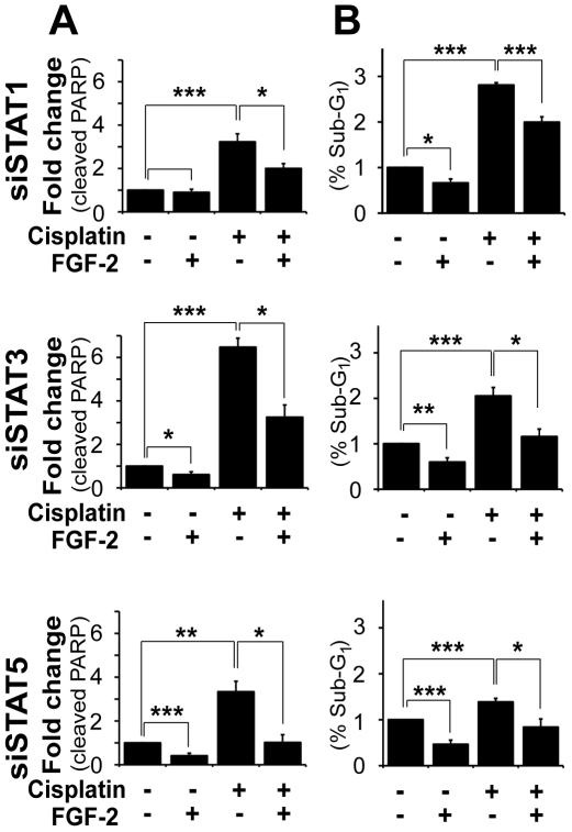 Silencing STAT1, STAT3 or STAT5A/B did not impair the ability of FGF-2 to prevent cisplatin-induced apoptosis in U2OS cells. Cells were transfected with 75 nM of siRNA against STAT1, STAT3 or STAT5A/B. Untransfected cells and cells transfected with non-specific siRNA (NS) were used as controls (c.f. Fig. 3 ). Cells were treated as in Figure 3 . A. Mean±SEM of densitometric values (cleaved PARP) from three experiments are shown. B. Cell cycle profiles of three independent experiments are graphically represented as mean±SEM of sub-G1 populations.