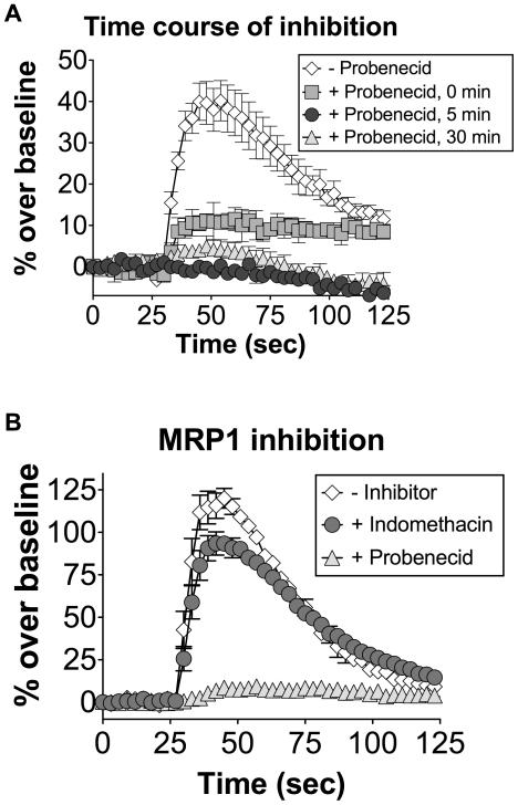 Probenecid inhibition of hTAS2R16 occurs rapidly and is not dependent on the MRP1 transporter. (A) HEK-293T cells were transiently transfected with hTAS2R16 and Gα16gust44. 22 hours post-transfection, calcium influx was measured for cells that were challenged with 3 mM salicin in the presence of 1 mM probenecid pretreatment for the indicated amount of time (0 min indicates co-injection of salicin with probenecid). hTAS2R16 was completely inactivated by 5 minutes of probenecid pretreatment. (B) HEK-293T cells were transiently transfected with hTAS2R16 and Gα16gust44 followed by challenge with 3 mM salicin in the presence or absence of the indicated compounds (1 mM, pretreatment for 60 minutes). The MRP1 transporter inhibitor indomethacin did not inhibit hTAS2R16 function. Error bars represent standard errors (n = 3).
