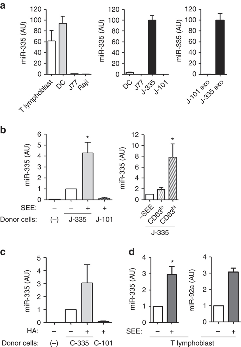 Exosomal miRNA-335 is transferred from T cell to APC in an Ag-specific manner. ( a ) Levels of miR-335 were assessed by quantitative reverse transcription PCR (qRT–PCR) in primary dendritic cells and T lymphoblasts, and in Raji and J77 cells. J77-CD63-GFP cells were stably transduced with miR-335 (J-335 cells) or miR-101 (J-101 cells), and miR-335 levels were determined by qRT–PCR in cells and derived exosomes. Data are representative of three experiments (mean and s.e.m.) ( b ) miR-335 levels in SEE-primed Raji cells sorted 24 h after conjugation with J-335 cells. J-101 were used as control donor cells. Left panel, Data are representative of seven independent experiments (mean and s.e.m), P =0.014 (one-sample t -test). Right panel, n =5 independent experiments; P =0.04 (one-sample t -test); error bars represent s.e.m. ( c ) miR-335 levels in HA-primed HOM-2 cells sorted 24 h after conjugation with CH7C17 cells overexpressing miR-335 (C-335). CH7C17 cells overexpressing miR-101 (C-101) were used as control donor cells. Data are representative of five experiments (mean and s.e.m.). ( d ) miR-335 and miR-92a levels in SEE-primed Raji cells sorted 24 h after conjugation with primary T lymphoblasts-expressing miR-335 and miR-92a endogenously. Data are representative of three experiments (mean and s.e.m.), * P =0.026 (one-sample t -test) AU, arbitrary units.