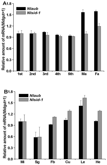 Expression of Nlsid-1 and Nlaub in N. lugens. (A) Developmental expression of Nlsid-1 and Nlaub in N. lugens from 1 st nymph to male adult (Ma) and female adult (Fa). (B) Tissue distribution of Nlsid-1 and Nlaub in N. lugens 3 rd instar nymph. qRT-PCR analyses were performed using total RNA from midgut (Mi), salivary gland (Sg), fat body (Fb), cuticle (Cu), leg (Le), and head (He). Data shown are means ± standard errors (N = 3).