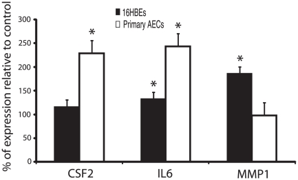 Relative mRNA expression levels of human genes obtained by RT-qPCR. RNA was obtained from four co-incubations each of 16HBE14o- (grey bars) or primary normal bronchial epithelial cells (AECs) (white bars) with conidia of A. fumigatus . Height of each bar represents expression of gene in co-incubated condition relative to cells alone control (mean ± SE). (* p