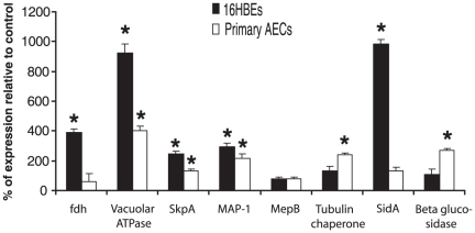 Relative mRNA expression levels of A. fumigatus genes as determined by RT-qPCR. RNA was obtained from four co-incubations each of A. fumigatus conidia with 16HBE14o- (grey bars) or primary human bronchial epithelial cells (AECs) (white bars). Height of each bar represents expression of gene in co-incubated condition relative to conida alone control (mean ± SE). (* p