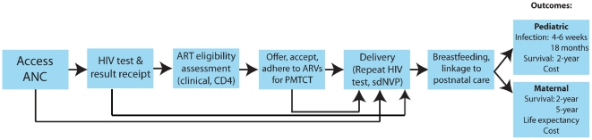 """Cascade"" of PMTCT and postnatal HIV care. Opportunities to maximize the effectiveness of PMTCT interventions may be lost at each step in the pathway. ANC: antenatal care, ARVs: antiretroviral drugs, ART: antiretroviral therapy, sdNVP: single-dose nevirapine."