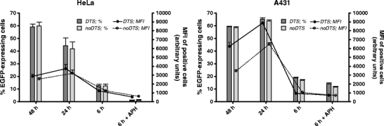 Dependency of the DTS effect on mitosis. % of EGFP-expressing cells ( bars ; left y-axis) and MFI of positive cells ( lines ; right y-axis) after transfection of HeLa cells ( left panel ) or A431 cells ( right panel ) with plasmids with DTS (pCMV/EGFP; dark grey bar and asterix ) versus plasmids without DTS (pCMV/EGFP_noDTS; light grey bar and open circle ). Cells were transfected at a dose of 1 μg DNA/well in a 24-well plate with <t>lipofectamine</t> for 4 h in the presence of serum, washed and analyzed at the indicated timepoints after onset of transfection. As a model for non-dividing cells, cells were arrested at the S-phase by treatment with 15 μM aphidicolin starting 24 h prior to transfection and continuously throughout the experiment. Data are represented as mean ± SD of three independent measurements.