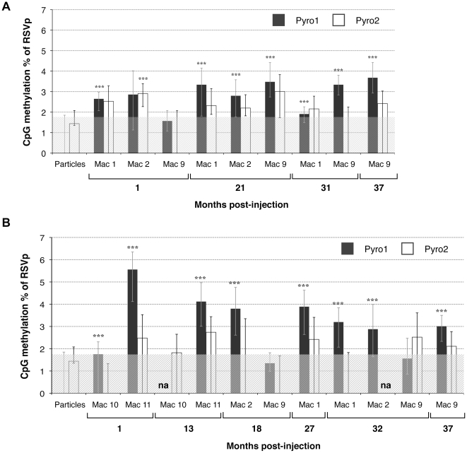 CpG methylation percentage of the RSVp after rAAV administration in NHP determined by low-throughput sequencing. NHP were injected IM (Mac 1, Mac 2, and Mac 9) or IV (Mac 10 and Mac 11) with the rAAV2/1-RSV-LEA29Y-WPRE-pA vector. Each animal received a dose of 5.10 12 vg/kg. Total DNA was extracted from transduced skeletal muscle (A) and liver (B) and subjected to sodium bisulfite conversion and subsequent PCR amplification. Each sample was read at least 4 times by PSQ96 pyrosequencing for the two CpG-rich plots Pyro1 and Pyro2. na: not analyzable. ( *** ) p value
