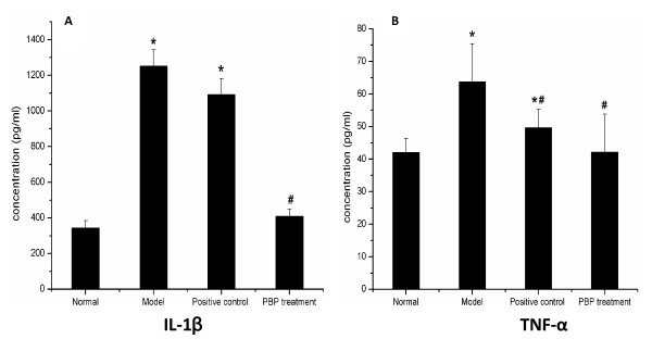 Concentration of IL-1β and TNF-α in joint. ( ± s, n = 6) . ELISA showed that the level of IL-1β and TNF-α in the ankle steep were reduced by intraperitoneal PBP. *; P