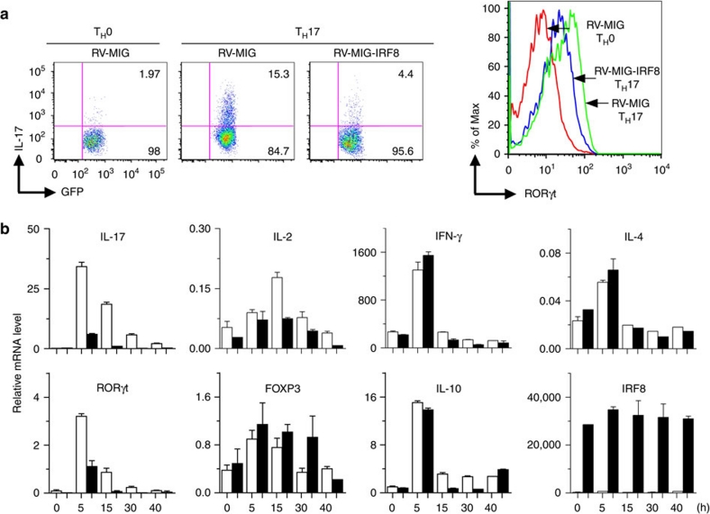 Transduction of IRF8 inhibits T H 17-associated genes. ( a ) Naive CD4 + T cells from C57BL/6 mice were infected with retrovirus encoding IRF8 or empty vector and were activated under T H 17-inducing conditions for 4 days. The cells were re-stimulated with PMA/ionomycin for 5 h and stained for intracellular IL-17 and RORγt and analysed by flow cytometry. ( b ) EL4 cells were transduced with retroviruses encoding IRF8 (black column) or GFP (white column) for 48 h and the transduced cells were then stimulated with PMA/ionomycin for various times as indicated. Total RNA was extracted and the transcript levels of T H 17-associated genes were analysed by qPCR as indicated. The results are normalized to ubiquitin levels. Data are from one experiment representative of three independent experiments. Error bars, s.d.