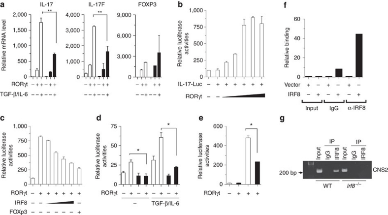IRF-8 represses IL-17 transcription. ( a ) IRF8-expressing EL4 cells (black column) or control cells (white column) were transiently transfected with a RORγt plasmid for 24 h, and the cells were treated with plate-bound anti-CD3 and anti-CD28 antibodies in the presence or absence of the indicated cytokines for 8 h. qPCR analyses of transcripts of the indicated genes were performed and the results were normalized to the levels of ubiquitin transcripts. ** P