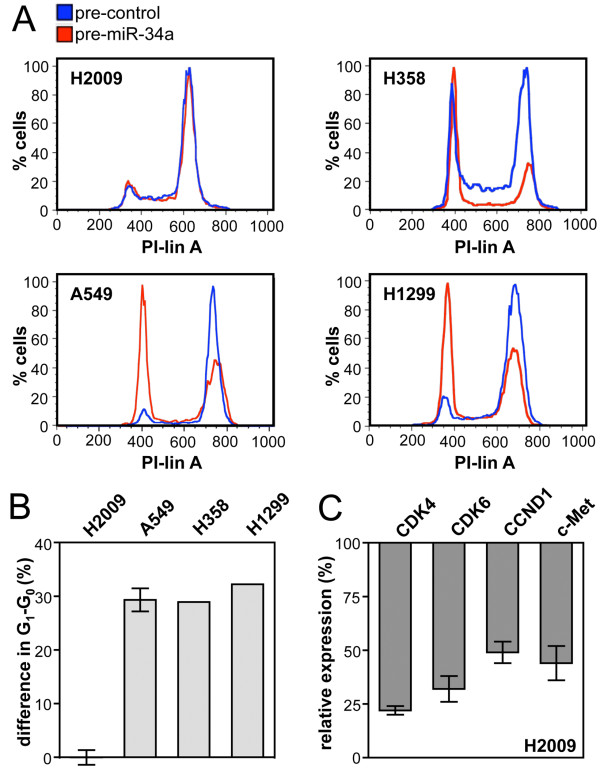 H2009 cells are refractory to miR-34a -induced cell cycle arrest . (A) DNA content distribution of NSCLC cells transfected with precursor miRNA or precursor control. Cells were treated for 18 h with nocodazole beginning 24 h post-transfection. (B) Percent difference in G 1 -G 0 between cells transfected with pre-miR-34a and cells transfected with precursor control. H2009, A549, n = 3; H1299 and H358, n = 1. (C) mRNA levels of known miR-34a targets. H2009 cells were transfected with pre-miR-34a and harvested 42 h post-transfection (n = 3). Values are relative to the level obtained for the control transfected with precursor control.