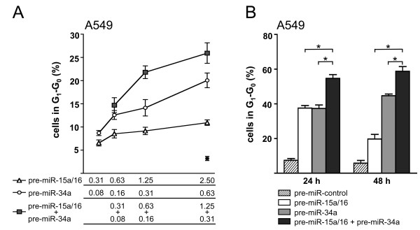 miR-15a/16 and miR-34a act synergistically to induce cell cycle arrest . (A) Cell cycle analysis of A549 cells transfected with pre-miR-34a and/or pre-miR-15a/16 under non-saturating conditions. Precursors were supplemented with precursor control to yield a total concentration of 2.5 nM per transfection. *, transfection with 2.5 nM precursor control. Cells were treated for 18 h with nocodazole beginning 24 h post-transfection (n = 3). (B) Cell cycle analysis under saturating conditions. A549 cells were transfected with 20 nM precursor or precursor control or co-transfected with 10 nM pre-miR-34a and 10 nM pre-miR-15a/16 and treated for 18 h with nocodazole beginning 24 h (left panel) or 48 h (right panel) post-transfection (n = 3).