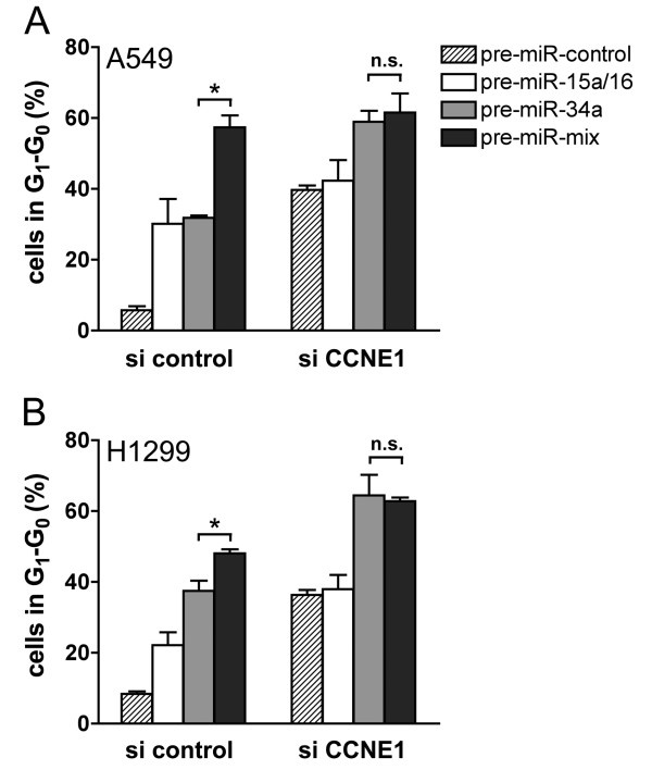 Synergistic action on cell cycle arrest is due to the down-regulation of unique mRNA targets . A549 (A) or H1299 cells (B) were co-transfected with 20 nM miRNA precursors and 7.8 nM siRNA against CCNE1 and subsequently treated for 18 h with nocodazole beginning 24 h post-transfection. Comparable results were also obtained 48 h post-transfection (data not shown).