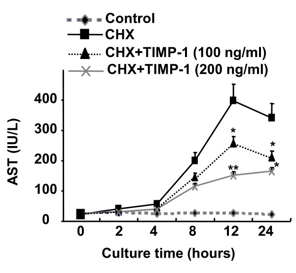 TIMP-1 is a survival factor for hepatocytes in vitro . Hepatocytes (2 × 10 5 cells/per well) were cultured in 6-well plates and incubated with or without cycloheximide (CHX) (100 μM) in the absence or presence of TIMP-1(100 ng/ml or 200 ng/ml). Hepatocyte death was determined by measurement of AST levels in the supernatants. *P
