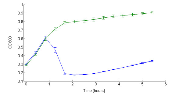 Lysis dynamics of TOP10 bearing the thermoinducible lysis device in low copy plasmid grown in microplate reader . OD600 of TOP10 with pLC-T4LysHeat induced with a temperature shift from 30°C to 42°C in the microplate reader (blue line). Heat-induced pLC-T4Lys - (green line) is shown as the negative control. Induction was performed in exponential phase at OD600 = 0.3. Error bars represent the 95% confidence interval of the estimated mean. For clarity of presentation, data points shown here are resampled with a 30-minute sampling time.