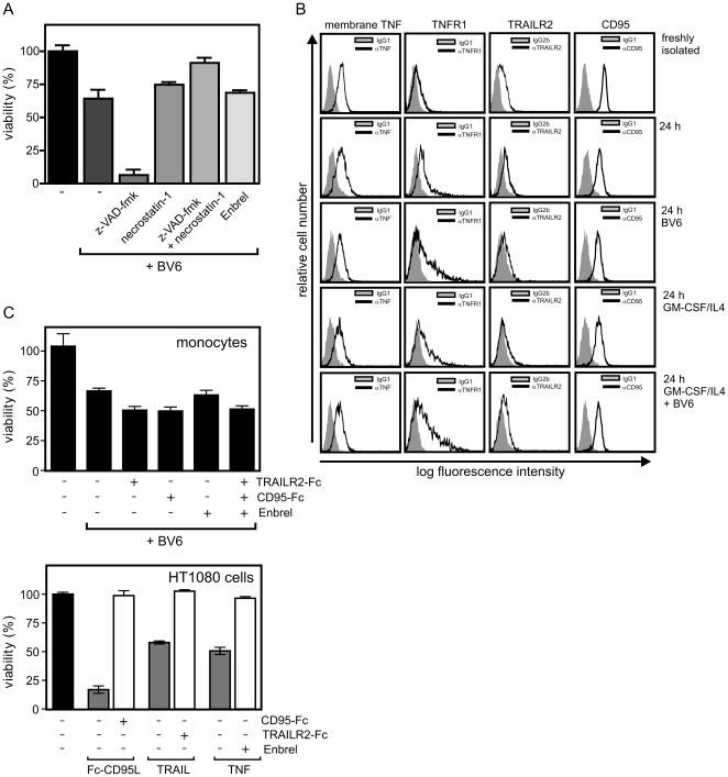 BV6 induces apoptotic and necrotic cell death in monocytes. (A) Freshly isolated monocytes were incubated in GM-CSF/IL4 supplemented medium for 1 h with the indicated mixtures of z-VAD-fmk (20 µM), necrostatin-1 (70 µM) and the TNF inhibitor TNFR2-Fc/Enbrel (50 µg/ml). Cells were then challenged overnight with 10 µM BV6 and cell viability was finally evaluated by help of the MTT assay. (B) Freshly isolated monocytes and monocytes cultivated overnight in the presence of the indicated mixtures of GM-CSF/IL4 and 10 µM BV6 were analyzed by FACS for cell surface expression of membrane TNF and the death receptors TNFR1, CD95 and TRAILR2. (C) Monocytes were challenged with BV6 in the presence of soluble Fc fusion proteins of TRAILR2 (5 µg/ml), CD95 (50 µg/ml) and TNFR2 (Enbrel, 20 µg/ml) or a mixture of them. After 24 h viability was determined using the MTT assay (Left panel). The functionality of the three Fc fusion proteins was controlled in cell death assays with HT1080 and recombinant 50 ng/ml TNF, 4 ng/ml Fc-CD95L and 50 ng/mlTRAIL (right panel). Data shown are representative for three independent experiments.