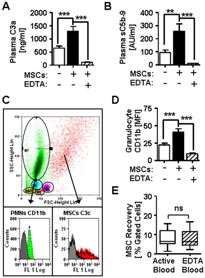 Blood exposure of MSCs activates complement and effector cells. Lepirudin-anticoagulated blood was incubated with MSCs (black), and blood treated with either PBS (white) or 10mM EDTA (shaded) served as active or inactive control, respectively. ( A ) Plasma levels of C3a (ng/ml, n = 13), and ( B ) Plasma level of soluble C5b-9 complex (AU/ml, n = 13) were detected with ELISA. ( C ) Flow cytometric analysis of PBMCs and MSCs after labeling of individual blood aliquots with specific antibodies and subsequent erythrocyte lysis; the cells were first gated according their scatter profile (top panel, scatter plot) and representative histograms for triggering of CD11b-expression on PMNs (green) or binding of C3-fragments to MSCs (red) are shown compared to EDTA-inactivated negative control blood (grey histograms). ( D ) Up-regulation of CD11b on PMNs in blood (MFI, n = 19). The median fluorescence intensity (MFI) of the cell-surface marker CD11b was assessed with flow cytometry. ( E ) Percentage of recovered MSCs after a 40 min exposure to active or EDTA-inactivated blood (n = 17). The data in figure A-E are means±SEM; with: ns = not significant; * *P