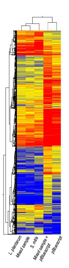 Hierarchical clustering of mixed samples demonstrates the resolution capabilities of the UBDA array . This dendogram and heat map illustrates a unique bio-signature pattern obtained from Lactobacillus <t>plantarum</t> , mixed sample (synthetic mixture in a 4:1 ratio of L. plantarum and Streptococcus mitis ), S. mitis , mixed sample (a synthetic mixture of L. plantarum and S. mitis genomic <t>DNA</t> in a ratio of 4:1 with a spike-in of pBluescript plasmid at 50 ng) and pBluescript plasmid. Normalized data from the 9-mer data set were filtered for intensity signals greater than the 20 th percentile. Only intensity signals with a fold change of 5 or greater were included. These 36,059 elements were subjected to hierarchical clustering with Euclidean distance being used as a similarity measure. The signal intensity values were represented on a log 2 scale and range from 8.4 to 13.4.