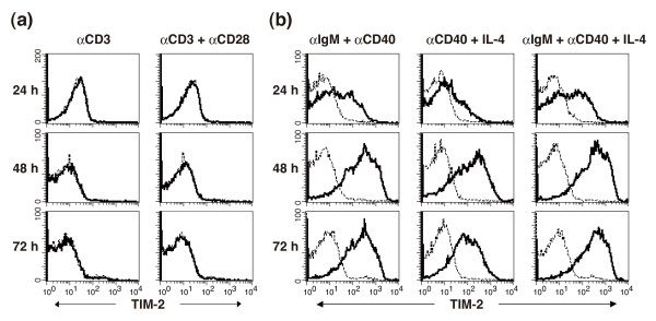 Expression of TIM-2 on CD4 T and B cells . (a) Expression of T cell immunoglobulin and mucin domain (TIM)-2 on activated CD4 T cells. Purified splenic CD4 T cells were stimulated by immobilized anti-CD3 monoclonal antibody (mAb) with or without anti-CD28 mAb and harvested at the indicated periods. Cells were stained with biotinylated RMT2-26 or control <t>IgG</t> followed by PE-labeled streptavidin. (b) Expression of TIM-2 on activated B cells. Purified splenic B cells were stimulated with the indicated combinations of anti-IgM Ab, anti-CD40 mAb, and IL-4. Cells were harvested at the indicated periods and stained with biotinylated RMT2-26 or control IgG followed by PE-labeled streptavidin. Thick lines indicate the staining with anti-TIM-2 mAb and the dotted lines indicate background staining with control IgG.