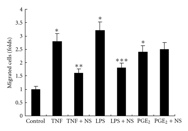 Migration analysis. Migration of BxPC-3 cells was increased after treatment with TNF- α (* P