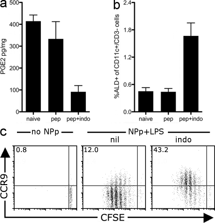 Indomethacin administration promotes the emergence of splenic RALDH + DCs in vivo and the priming of CCR9 + T cells systemically. (a–c) 5 × 10 5 CFSE-labeled CD8 + F5 T cells were transferred into C57BL/6 mice and, 1 d later, mice received 50 µg NP 366–374 -peptide plus 10 µg LPS via i.v. tail vein injection (NPp+LPS). Indomethacin-treated mice received 100 µg indomethacin i.v. 1 h before peptide and then once daily. 60 h after NP 366–374 peptide injection, mice were sacrificed and the spleens analyzed. (a) The concentration of PGE2 was determined in spleen homogenate by ELISA. Shown is the mean with SEM from three to five mice pooled from two experiments. (b) Splenocytes were treated with ALD and stained with CD11c and CD3 (to gate out to CFSE + T cells). Shown is the mean percentage of CD3-CD11c + DCs that are ALD + in the spleen. Mean with SEM from 7–11 mice per group is shown, pooled from four experiments. (c) Splenocytes were stained with antibodies against CD8α and CCR9. Dot plots were gated on live (PI − ) CD8 + CFSE + T cells and show the expression of CCR9 and CFSE on donor F5 T cells. Inset value is the mean percentage of dividing T cells that are CCR9 + pooled from between 6 and 13 mice per group, acquired over four experiments.