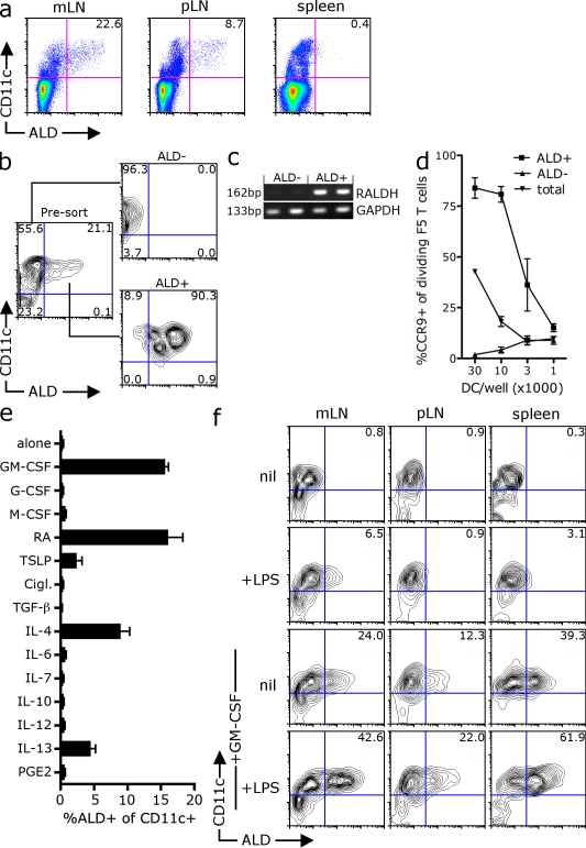 Identification of factors that induce RALDH expression in vitro. (a) mLN, skin-draining pLN, or spleens from C57BL/6 mice were digested, treated with ALD, and stained with anti-CD11c antibodies for analysis by flow cytometry. A representative dot plot of ALD and CD11c expression from at least seven experiments is shown with inset values indicating the percentage of live (PI − ) CD11c + DCs that are ALD + . The mean was taken from between 11 and 23 mice. (b–d) CD11c + mLN cells sorted into ALD + and ALD − subsets. (c) The expression of RALDH2 mRNA by ALD + and ALD − DC subsets was examined by RT-PCR (values indicate molecular mass of PCR product). (d) NP 366–374 peptide–pulsed total CD11c + mLN DCs or CD11c + DCs sorted into ALD + or ALD − subsets were used to stimulate CFSE-labeled CD8 + F5 T cells in vitro. After 4 d, the expression of CCR9 on dividing T cells was analyzed by flow cytometry. The graph shows the mean percentage of dividing T cells that express CCR9 with SEM pooled from two independent experiments. (e) BM cells were cultured with FLT3-L in the presence of the indicated factors. After 3 d, LPS was added and, 18 h later, cells were treated with ALD and stained with CD11c. Shown is the percentage of CD11c + DCs that are ALD positive. The mean was taken from two experiments with SEM. (f) ALD − CD11c + DCs isolated from the mLN (mes), pLN, or spleen were cultured with GM-CSF and/or LPS for 48 h before analysis of RALDH activity by ALD staining. A representative contour plot of ALD and CD11c expression is shown. Inset values show the mean percentage of CD11c cells that are ALD + pooled from three experiments.
