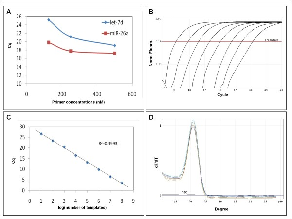 MiR-specific <t>qPCR</t> on synthetic templates with DNA primers . A The effect of primer concentration on Cq value of ssc-let-7d and ssc-miR-26a miR-specific qPCR assays. Real-time PCR assays were performed in parallel at <t>three</t> different concentrations (125, 250 and 500 nM) of the forward and of the reverse primers. B Amplification curves of an eight log 10 dilution series of a synthetic ssc-let-7d template in the ssc-let-7d miR-specific qPCR assays. All samples contained a final concentration of 0.2 ng/μl salmon sperm DNA. C Extrapolation of Cq as function of the log 10 of the number of templates for the same experiment as in B was a straight line (R 2 = 0.9993) with slope of -3.341 (PCR efficiency = 99%) over eight log 10 dilution of the template. D Melting curve analysis of the same experiment. No template control is labeled ntc. Melting curve analysis was performed from 60°C to 99°C.
